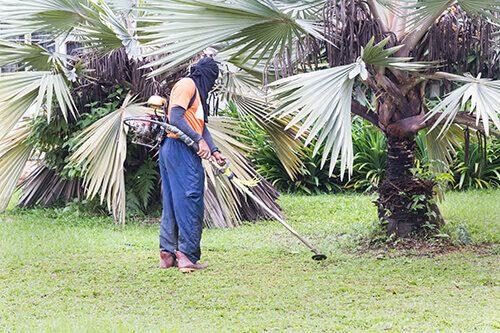 Аериране на тревата – какво е?